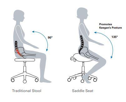 Freedom Pony Saddle stool _ B