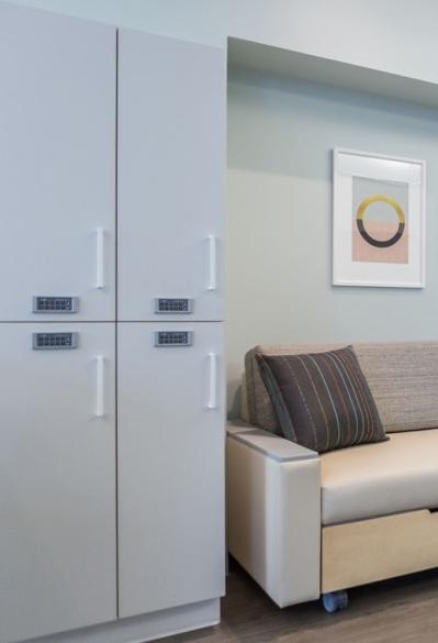 Infusion Bay _ Villa Health Sleep Sofa. Alterna. Sanctuary. Meadow _CROPPED