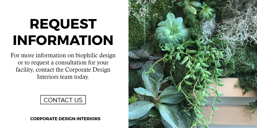 CDI Features Plants in the Workplace